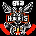 GTA Black Hornets