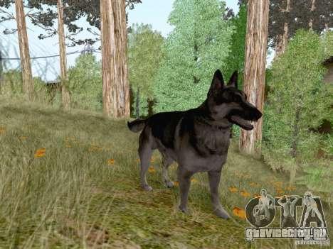 Hunting Mod для GTA San Andreas восьмой скриншот