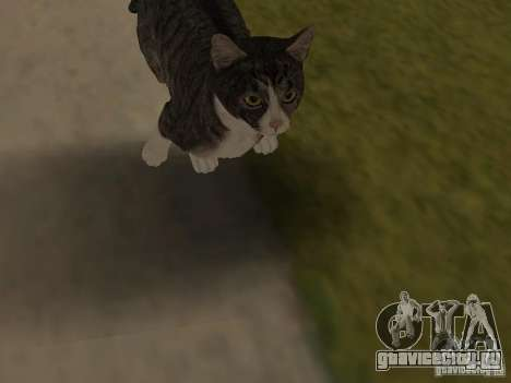Животные для GTA San Andreas