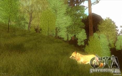 Wild Life Mod 0.1b для GTA San Andreas седьмой скриншот