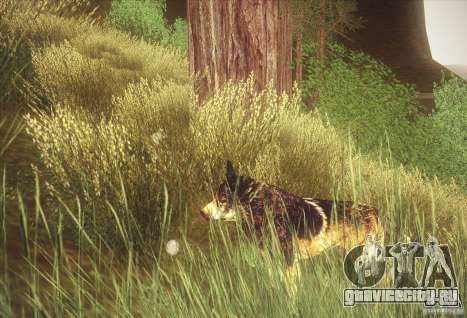Hunting Mod для GTA San Andreas второй скриншот