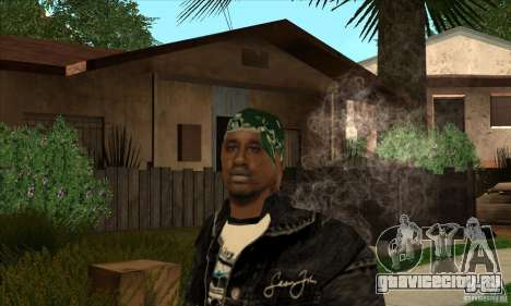 grove skin 1 рангов для GTA San Andreas третий скриншот