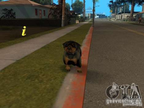Животные для GTA San Andreas четвёртый скриншот
