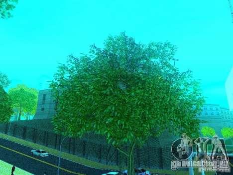 Новый Color Mod для GTA San Andreas четвёртый скриншот