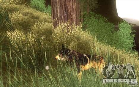 Wild Life Mod 0.1b для GTA San Andreas третий скриншот