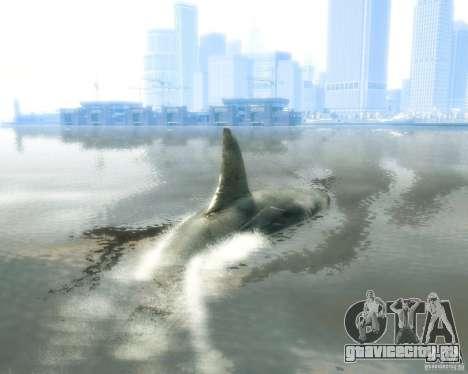 Megalodon для GTA 4 вид справа