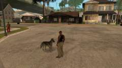 Собака в GTA San Andreas