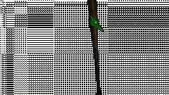 Бита с зелёной повязкой