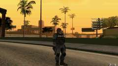 SWAT скин
