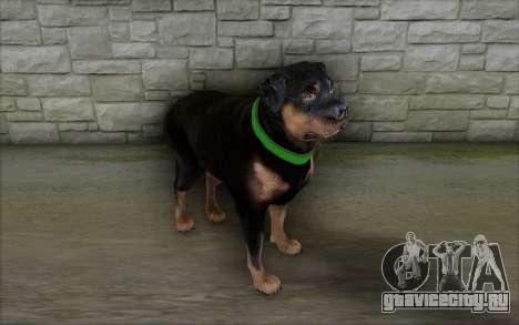 Rottweiler from GTA 5 для GTA San Andreas