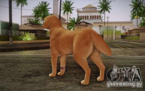 Ротвейлер для GTA San Andreas второй скриншот