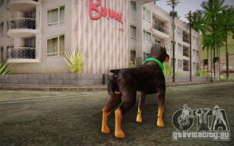 Rottweiler from GTA V для GTA San Andreas второй скриншот