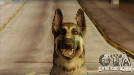Dog Skin v2 для GTA San Andreas третий скриншот