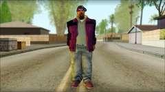 Plen Park Prims Skin 3 для GTA San Andreas