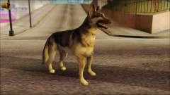 Dog Skin v2 для GTA San Andreas
