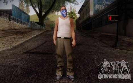New Fam Skin 2 для GTA San Andreas