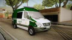 Mercedes-Benz Sprinter GC Trafico Spanish